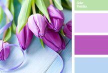 Déco couleurs