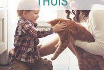 Libelle - Thuis / Alle tips & tricks die het leven thuis makkelijker maken! https://www.libelle.be/thuis/