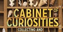 Just Cabinets of Curious / This board is about Assemblage boxes and shadow boxes people create to put there things that they don't know where to store or just make them into art or just cabinets of courious.