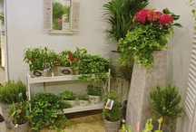 Ulkotilat ja kasvit / Parvekkeet, puutarhat, patiot yms.