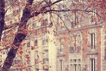 À la faveur de l'automne ...