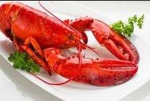 Seafood | Lobster / by Virginia Kingen