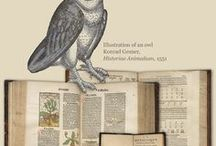 Harry Potter's World: Renaissance, Science, Magic, and Medicine / National Library of Medicine exhibition that explores Renaissance traditions that informed the Harry Potter books, featuring History of Medicine Division collections.