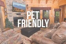 Pet Friendly Cabins / We understand the need to take your furry friends on vacation with you and we welcome them to Gatlinburg and Pigeon Forge with open arms! Our pet-friendly cabin rentals are the perfect escape for you, your family, and your cuddly counterparts! http://www.cabinsforyou.com/pet_friendly_cabins.htm