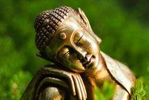 Buddha / by Hélène Fredette