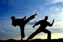 Martial Arts / should I be force to defend myself.. / by Sonny Pacaldo