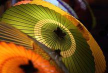 Ombrelles...parapluies / by Hélène Fredette
