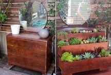 Gotta Love old drawers! / Re-Scape brings you inspiration for recycling and repurposing old drawers of all kinds!  / by Re-Scape.com