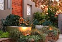 Outdoor Beautifaction Ideas / by Sonny Pacaldo