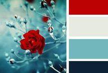►Concept Design: Color Palettes