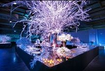 Gaia & Giacomo – December 2013 - Florence / A stunning and glamour wedding in Florence with a touch of winter decorations.