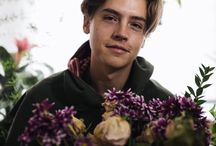 • cole sprouse •