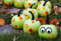 Painted Pumpkins / by Faulkner's Ranch