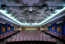 James Earl Jones Theater - Poughkeepsie Day School / Poughkeepsie, New York. The acoustic challenge for this space is to create an environment that works for acoustic (non-reinforced) performances as well as amplified music / digital video with full 5.1 surround playback. This is accomplished with the use of above ceiling low frequency absorption membranes as well as 80 geometrically placed 2' x 2' pre-fabricated mid-frequency diffuser units (manufactured by RPG Systems).