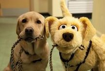 Innovative Puppetry / Using puppetry for therapy, healing, inspiration, teaching and learning