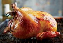 chicken & turkey / by Emma Orbach