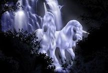 unicorns / magical,mystical... and completly awesome!!!