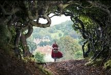 Into the woods / Into the woods and out of the woods and home before dark!