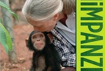 Webshop Jane Goodall Institute Netherlands / Products from the webshop of the Jane Goodall Institute Netherlands