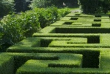 Formal and Classical Gardens / Formal gardens: timeless, elegant, classical