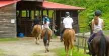 Skyland Camp For Girls - Since 1917 / A traditional overnight camp for girls, featuring full- and partial-summer sessions. We're joined by girls all around the country. Experience the best summer of your life in the mountains of North Carolina.
