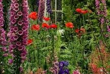 Ogród rustykalny