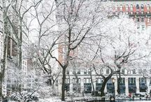 NYC - Winter / Winter in New York City is magical.  Share the excitement.