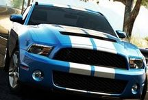 Mustang Eye Candy