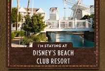 Walt Disney World® Resort Planning Pins / INSTRUCTIONS: 1) Create a Disney Vacation Board. 2) Pin your favorite Disney experiences and start visualizing your vacation!