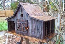 Bird houses and birds / BIRDS !!! / by Diana Garbers