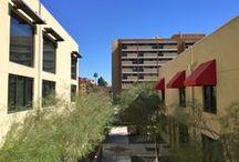Downtown Phoenix / Downtown Phoenix