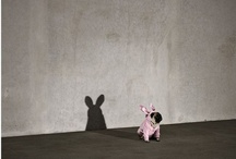 rabbit in disguise