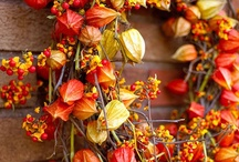 Autumn / by Yuliveia Danaery