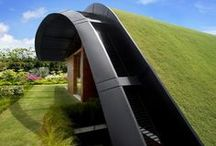 Green Roofs / by Lyons Roofing