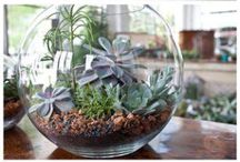 Simple DIY Projects / Simple yet amazing DIY projects.