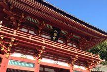 Kamakura 鶴岡八幡宮
