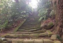 Kamakura 瑞泉寺 / 鎌倉 瑞泉寺