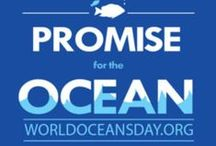 World Oceans Day / World Oceans Day, held every June 8th, is the UN-recognized day of ocean celebration and action. People all over our blue planet organize celebrations – which can be a huge event in your community, a special announcement, or anything in between – to support action to protect the ocean. This year, the theme is Healthy oceans, healthy planet, and we're making a special effort to stop plastic pollution.
