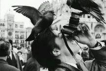 Behind the lens • photography / Ce tableau me trottait dans la tête depuis quelques temps, le voilà enfin. La photo de couverture (celle ou l'on voit Alain Delon) est l'une de mes photos préférées, je la trouve juste magnifique !