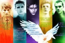 The Raven Cycle / Book series by Maggie Stiefvater The Raven Boys / The Dream Thieves / Lily Blue, Blue Lily / The Raven King