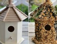 DIY Projects for the Birds