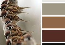 Home Decor for Bird Lovers