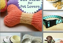 For the Home-Pet Projects, Food & DIY