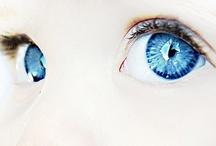 Baby Blue / by Susan Walker