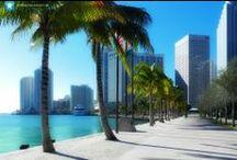 Calles de Miami / En las aceras, en sus fantásticas tiendas, en las avenidas y desde ellas hacia la playa... Miami siempre guarda algo para nunca parar de sorprenderte.