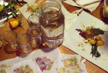 Coop Le Milieu Workshops/ Ateliers / www.lemilieu.ca
