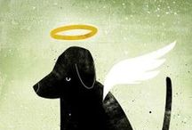 Pet loss and grief / Surviving the loss of a beloved pet