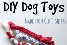 DIY for our furry pals / Projects that do-it-yourselfers might want to tackle.