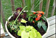 General Gardening Tips / Good gardening practices and tricks