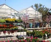Our Nursery / Take a virtual tour..this is what you can expect when visiting The Garden Center!